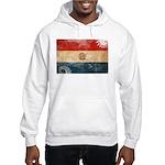 Paraguay Flag Hooded Sweatshirt