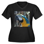 Blue and Gold Macaw Women's Plus Size V-Neck Dark