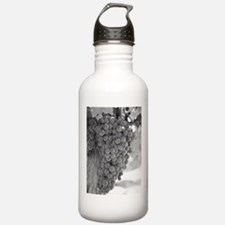 Wine Country Gifts Water Bottle
