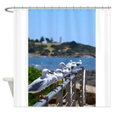 Seagulls2 Shower Curtain