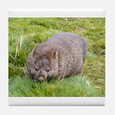 Wombat Tile Coaster