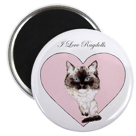 I Love Ragdolls Magnet