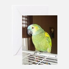 Amazon Parrot/ Nanette Greeting Card