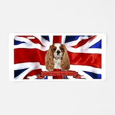 Cute British Aluminum License Plate