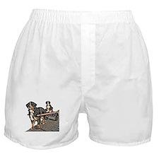 Back Seat Drafter Boxer Shorts
