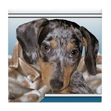 Speckled Dachshund Dogs Tile Coaster