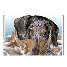 Speckled Dachshund Dogs Postcards (Package of 8)