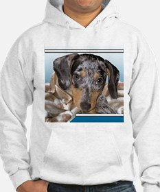 Speckled Dachshund Dogs Hoodie