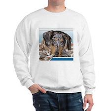 Speckled Dachshund Dogs Sweatshirt