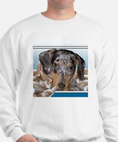Speckled Dachshund Dogs Sweatshirt