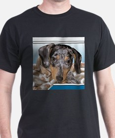 Speckled Dachshund Dogs Black T-Shirt