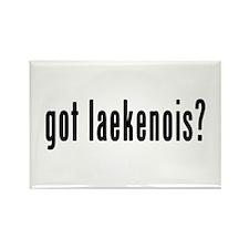 GOT LAEKENOIS Rectangle Magnet