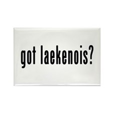 GOT LAEKENOIS Rectangle Magnet (10 pack)