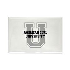 American Curl UNIVERSITY Rectangle Magnet