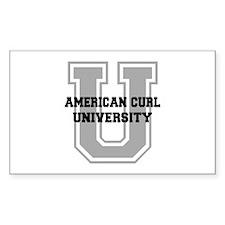 American Curl UNIVERSITY Decal