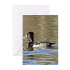 Ring-necked Duck Greeting Cards (Pk of 20)