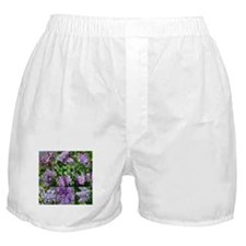 Lilac Collage #16 Boxer Shorts
