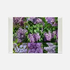 Lilac Collage #16 Rectangle Magnet