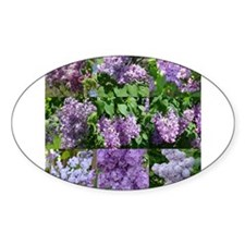 Lilac Collage #16 Oval Decal