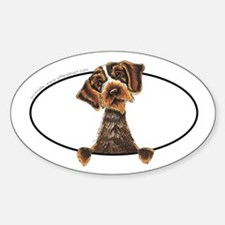 WIrehaired Pointing Griffon Peeking Bumper Bumper Stickers