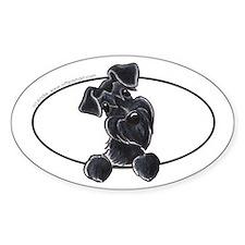 Black Schnauzer Peeking Bumper Bumper Stickers
