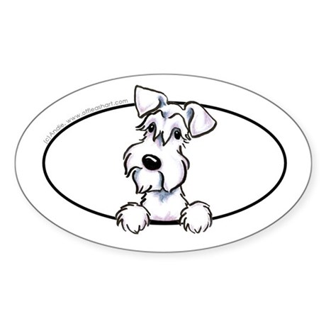 White Schnauzer Peeking Bumper Sticker (Oval)