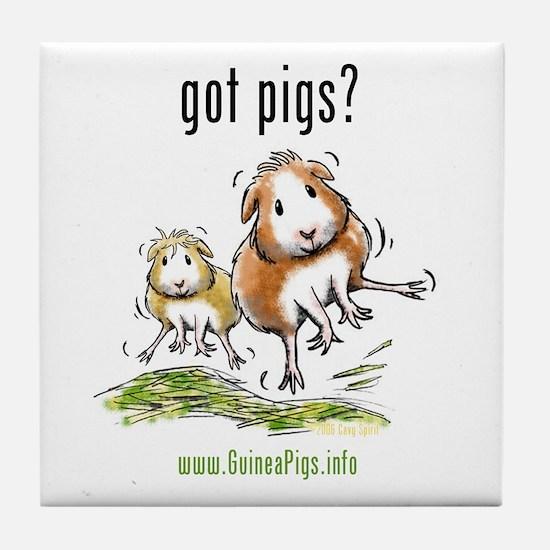 Unique Guinea pigs Tile Coaster
