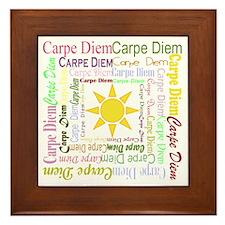 Carpe Diem Framed Tile