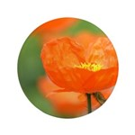 Orange Poppy Flower 3.5