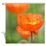 Orange Poppy Flower Shower Curtain
