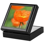 Orange Poppy Flower Keepsake Box