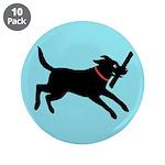 Black Labrador Retriever 3.5