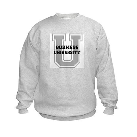 Burmese UNIVERSITY Kids Sweatshirt