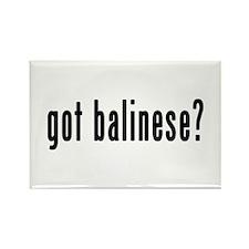 GOT BALINESE Rectangle Magnet