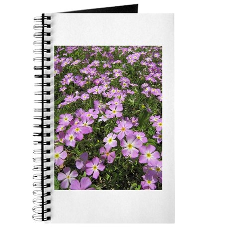 Pink Phlox Journal