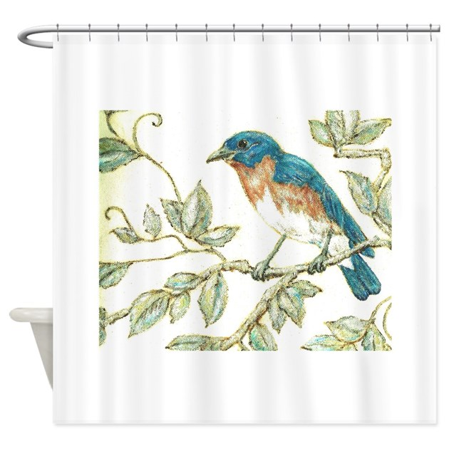 Eastern bluebird shower curtain by vleeoriginals for Eastern bluebird coloring page