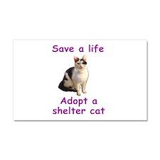 Shelter Cat Car Magnet 20 x 12