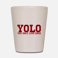 YOLO Shot Glass