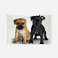 Staffie puppies Rectangle Magnet (100 pack)