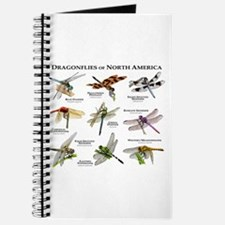 Dragonflies of North America Journal