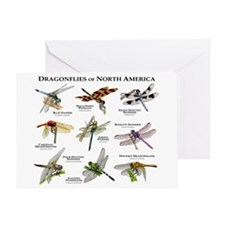 Dragonflies of North America Greeting Card