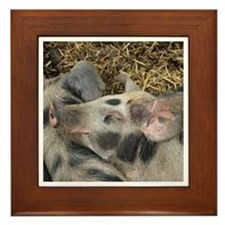 Cool Happy pig Framed Tile