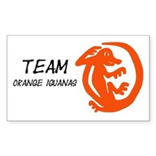 Orange Iguanas, Team Decal