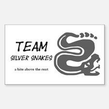 Silver Snakes, Team Decal