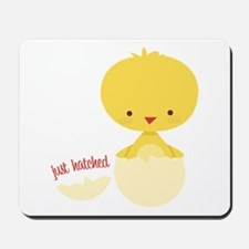 Just Hatched Chicken Mousepad