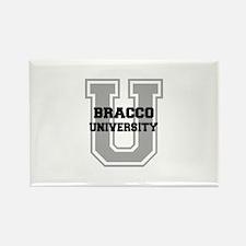 Bracco UNIVERSITY Rectangle Magnet