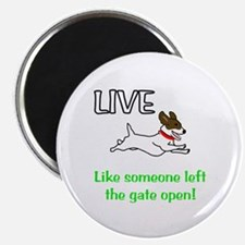 Live the gates open Magnet