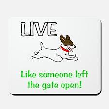 Live the gates open Mousepad