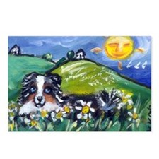 Australian Shepherd blue merl Postcards (Package o