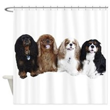 4Cavaliers Shower Curtain